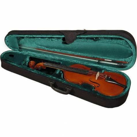 Hora violin case