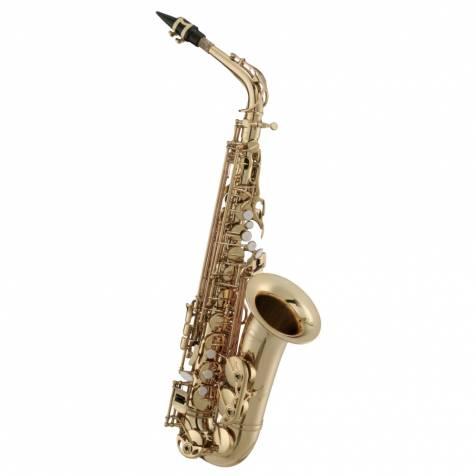 Maxtone Alto Sax